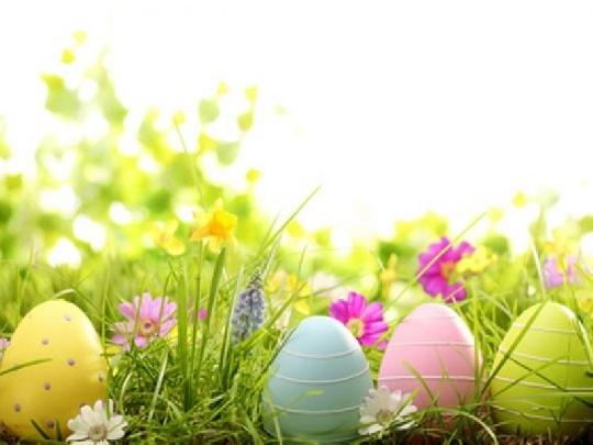 osterbraeuche-eier-auf-der-wiese