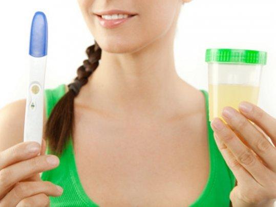 schwangerschaftstest-urinprobe