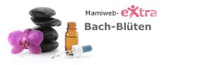eXtra: Bachblüten