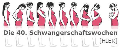 Eierlikörkuchen Schwangerschaft