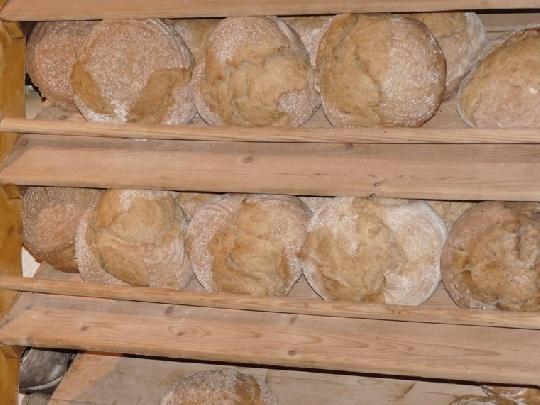 vollkornbrot-ist-mineralstoffreich