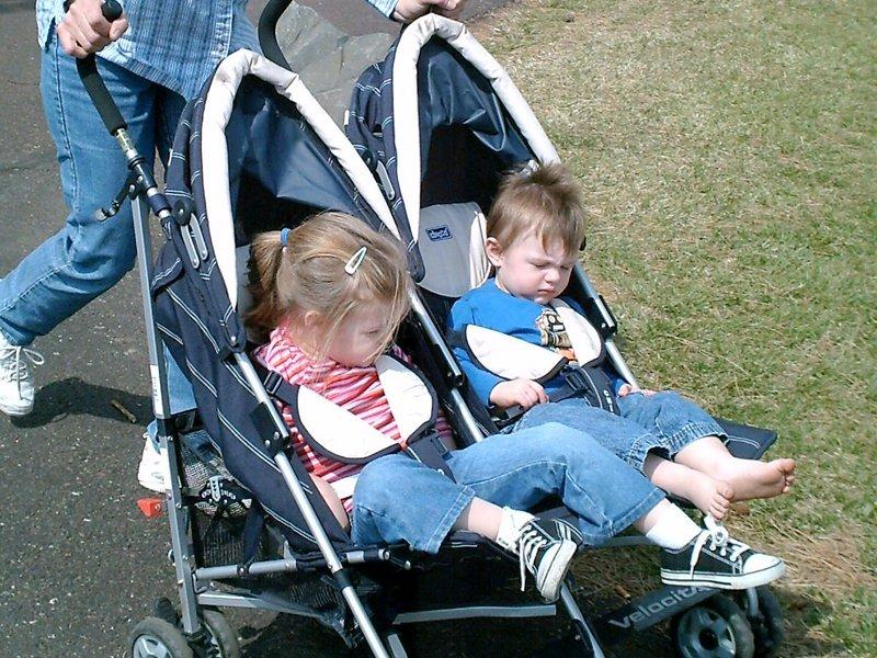 zwillinge-im-kinderwagen