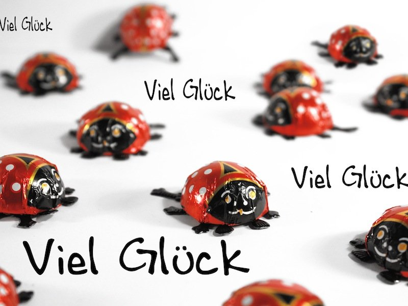 glueckskaefer-fuer-silvester