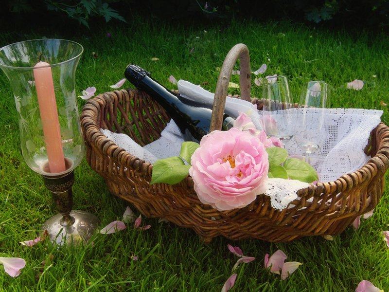Picknick für Verliebte im Frühling - Mamiweb.de