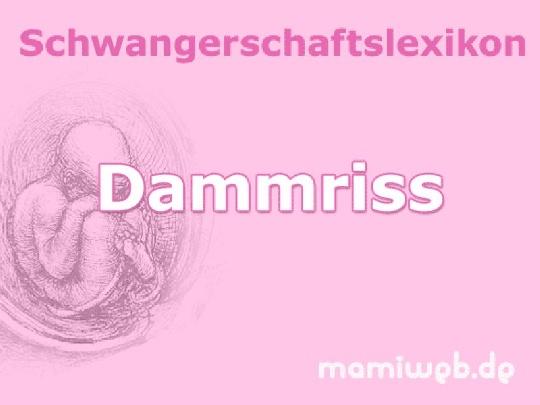 dammriss