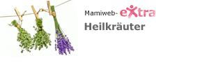 eXtra: Heilkräuter