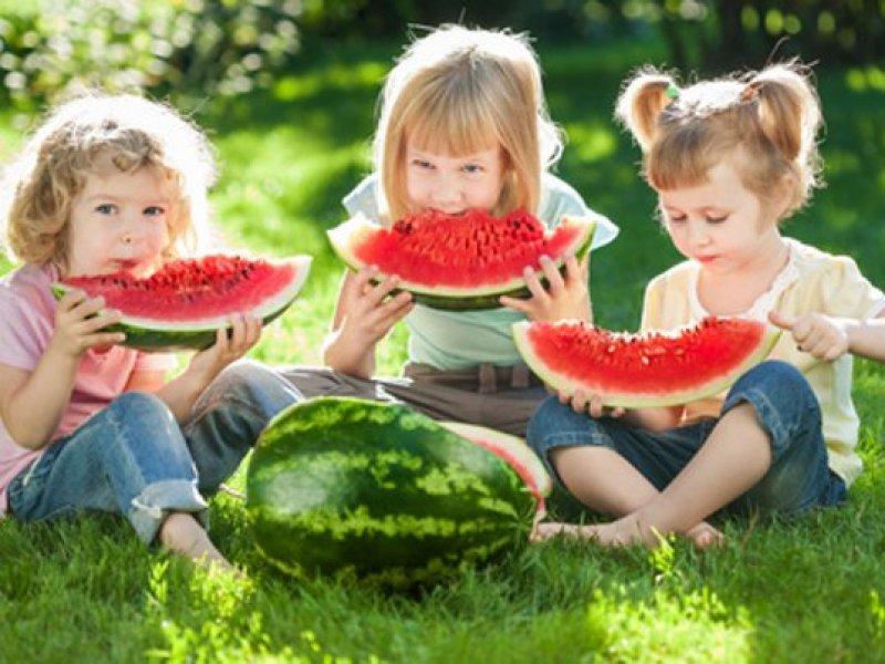 kinder-picknick